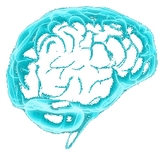 Cognitive training - brain